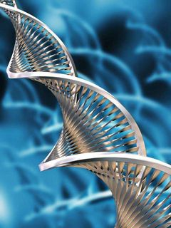 Biotech2