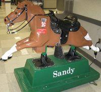 Sandy-Penny-Horse-Meijer
